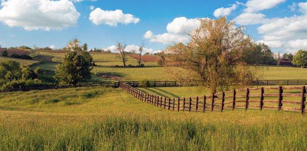 Moonlight Fields Central Kentucky S Premier Wedding Farm